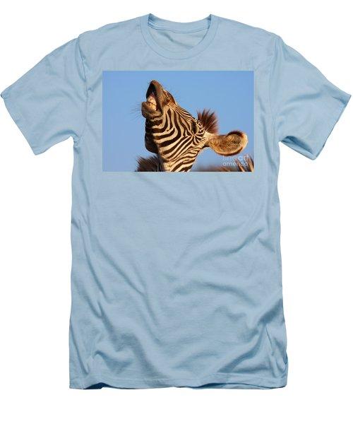 Laughing Zebra Men's T-Shirt (Slim Fit) by Nick  Biemans