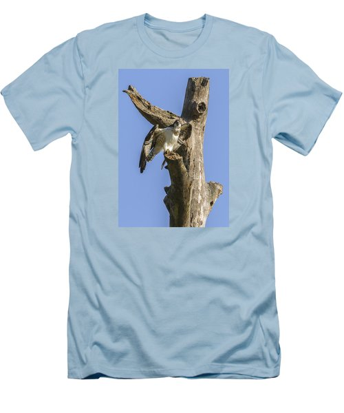Men's T-Shirt (Slim Fit) featuring the photograph Osprey Pose by David Lester