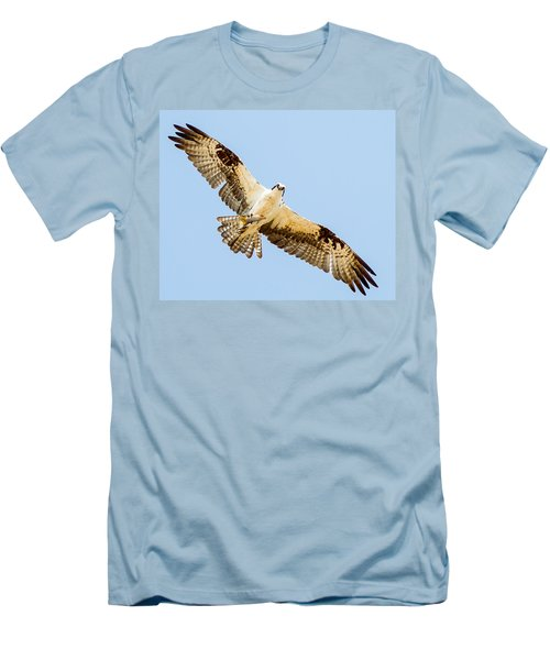 An Osprey Feeding On A Trout Men's T-Shirt (Slim Fit) by Brian Williamson