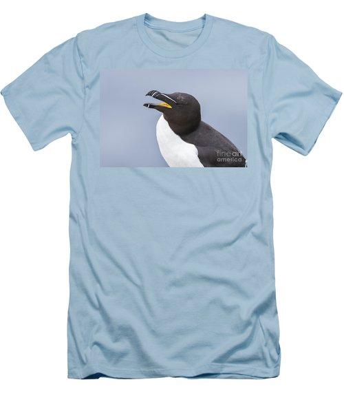 Razorbill Men's T-Shirt (Athletic Fit)