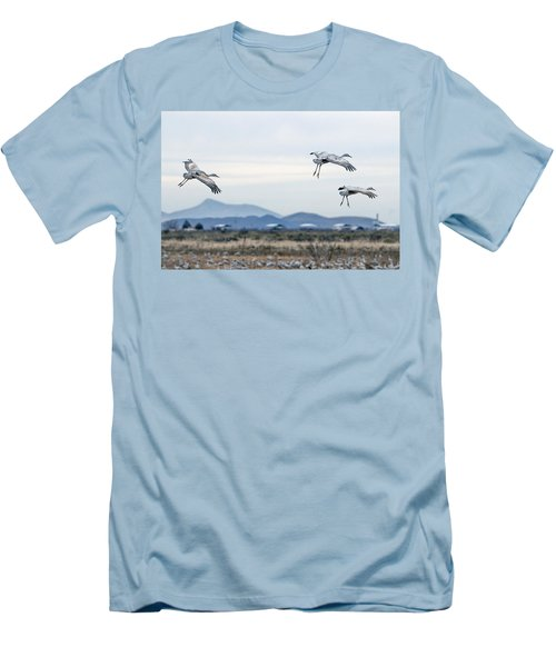 Sandhill Cranes Men's T-Shirt (Athletic Fit)