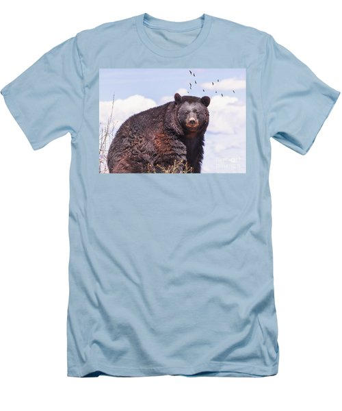 American Black Bear Men's T-Shirt (Athletic Fit)