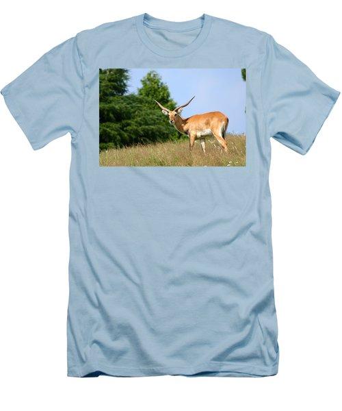 Antelope Men's T-Shirt (Athletic Fit)