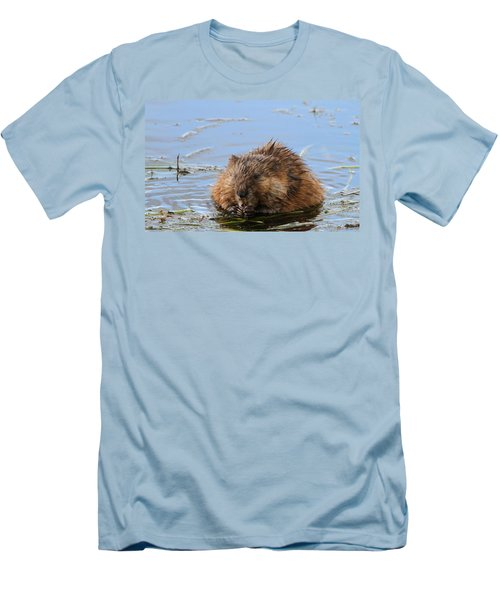 Beaver Portrait Men's T-Shirt (Slim Fit) by Dan Sproul