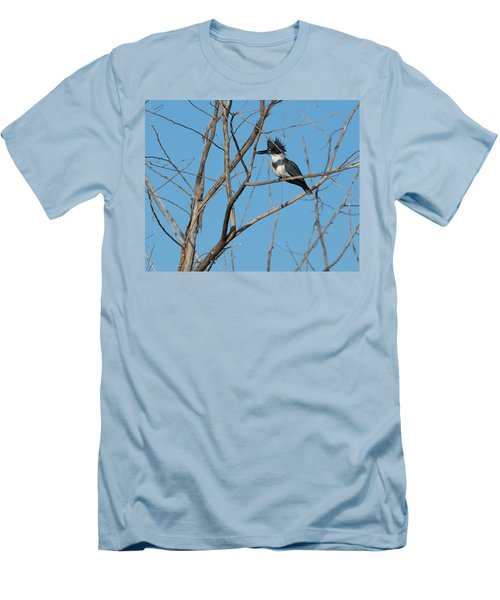 Belted Kingfisher 4 Men's T-Shirt (Athletic Fit)