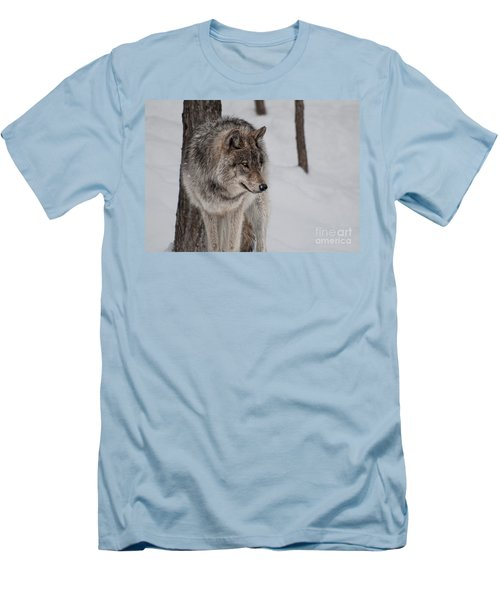Big Bad Wolf Men's T-Shirt (Athletic Fit)