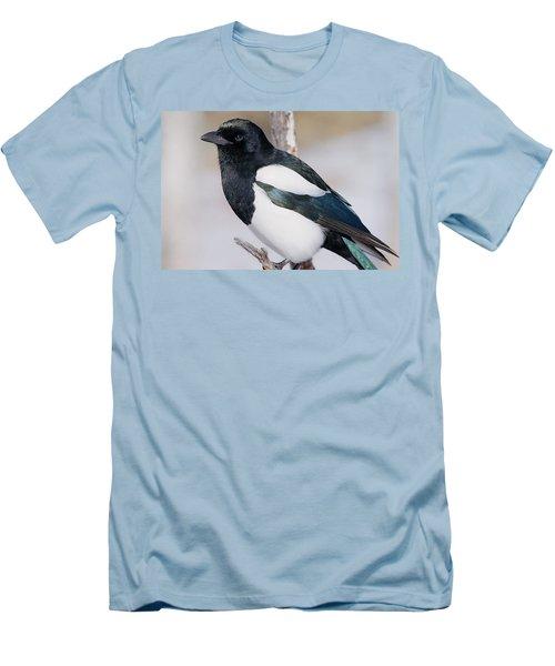 Black-billed Magpie Men's T-Shirt (Slim Fit) by Eric Glaser