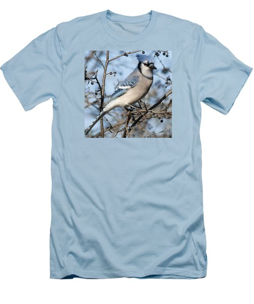 Blue Jay.. Men's T-Shirt (Slim Fit) by Nina Stavlund