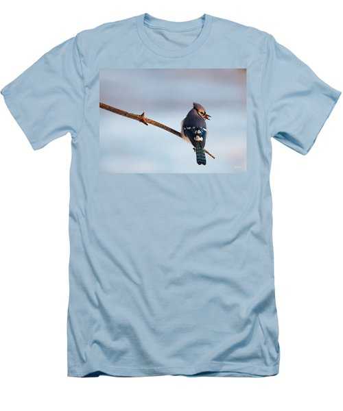 Blue Jay With Nuts Men's T-Shirt (Slim Fit) by Everet Regal