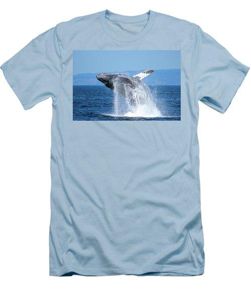 Breaching Humpback Men's T-Shirt (Athletic Fit)