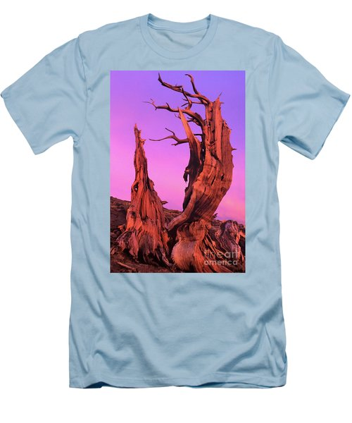 Men's T-Shirt (Slim Fit) featuring the photograph Bristlecone Pine At Sunset White Mountains Californa by Dave Welling