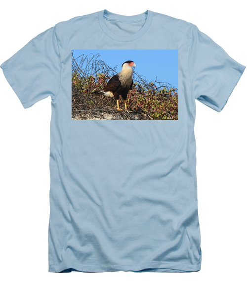 Caracara In The Dunes Men's T-Shirt (Slim Fit) by Debra Martz