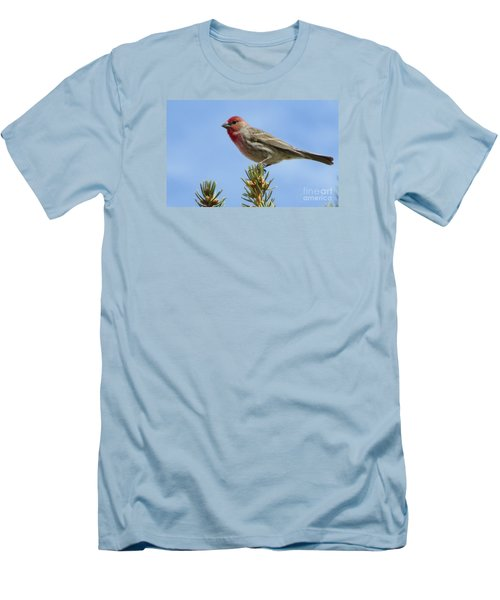 Men's T-Shirt (Slim Fit) featuring the photograph Cassin's Finch  by Janice Westerberg