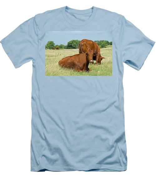 Men's T-Shirt (Slim Fit) featuring the photograph Cattle Grazing In Field by Charles Beeler