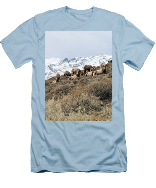 Chimney Rock Rams Men's T-Shirt (Athletic Fit)