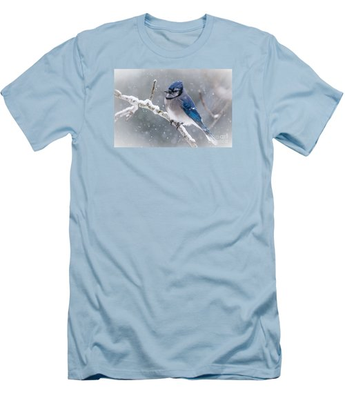 Christmas Card Bluejay Men's T-Shirt (Athletic Fit)