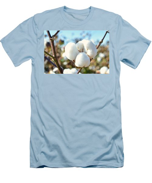 Cotton Boll Iv Men's T-Shirt (Slim Fit) by Debbie Portwood