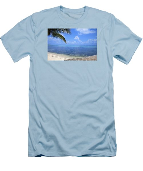 Down Island Men's T-Shirt (Slim Fit) by Stephen Anderson