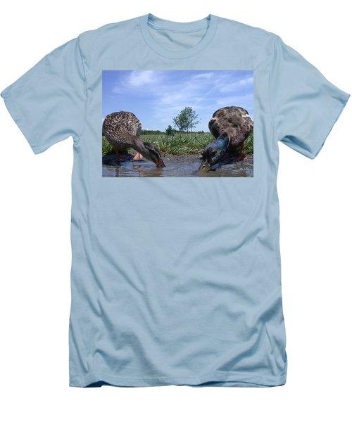 Ducks Eye View Men's T-Shirt (Athletic Fit)