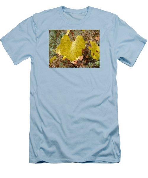 Fall Colors 6302 Men's T-Shirt (Slim Fit) by En-Chuen Soo
