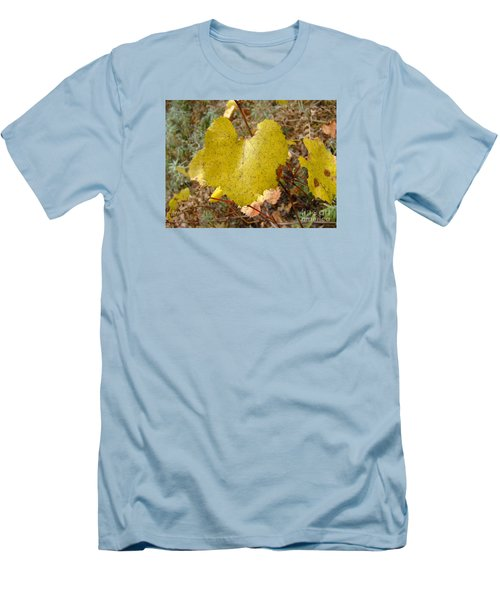 Fall Colors 6302 Men's T-Shirt (Athletic Fit)