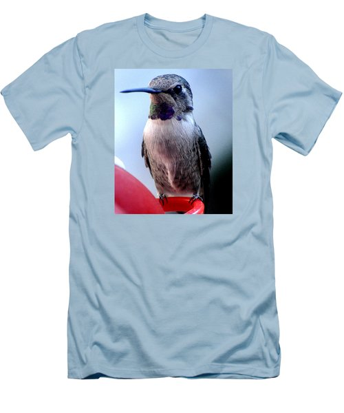 Men's T-Shirt (Slim Fit) featuring the photograph Female Anna With Purple Blue Throat by Jay Milo