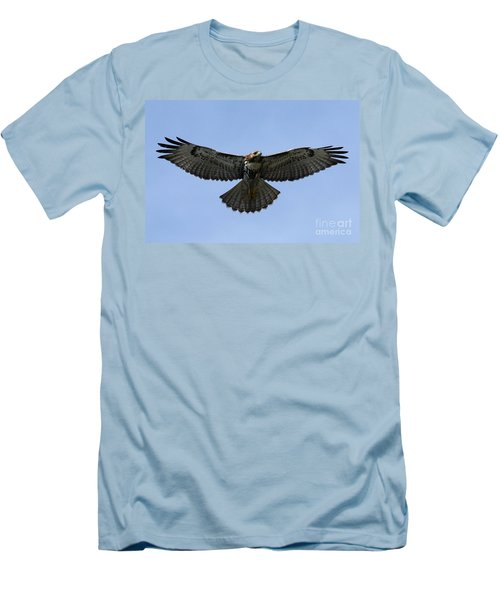 Flying Free - Red-tailed Hawk Men's T-Shirt (Slim Fit) by Meg Rousher