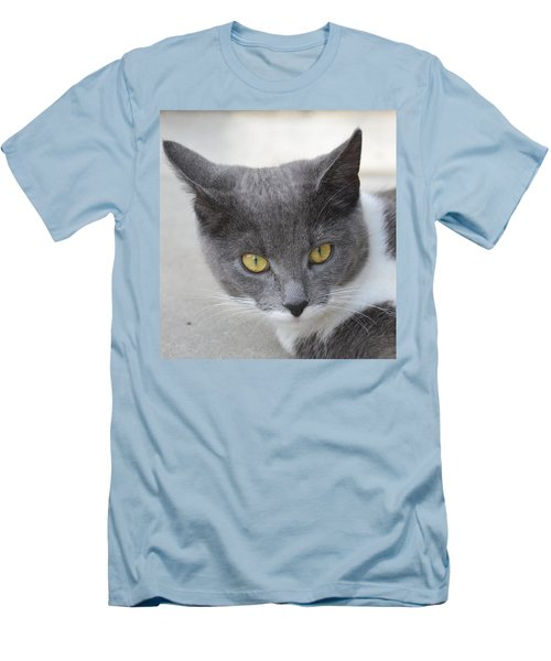 Gray Cat - Listening Men's T-Shirt (Athletic Fit)