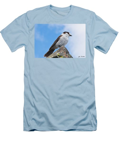 Gray Jay With Blue Sky Background Men's T-Shirt (Athletic Fit)
