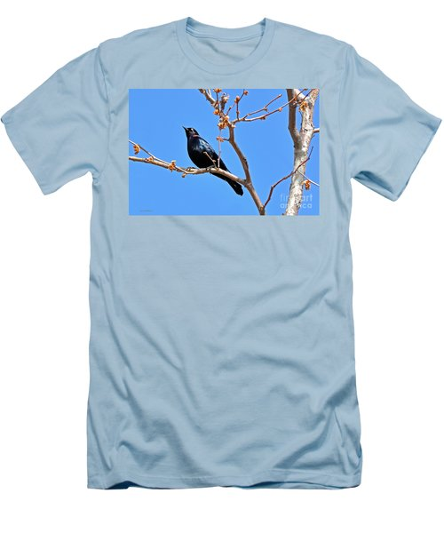 Great-tailed Grackle On A Sunny Spring Day Men's T-Shirt (Slim Fit) by Susan Wiedmann
