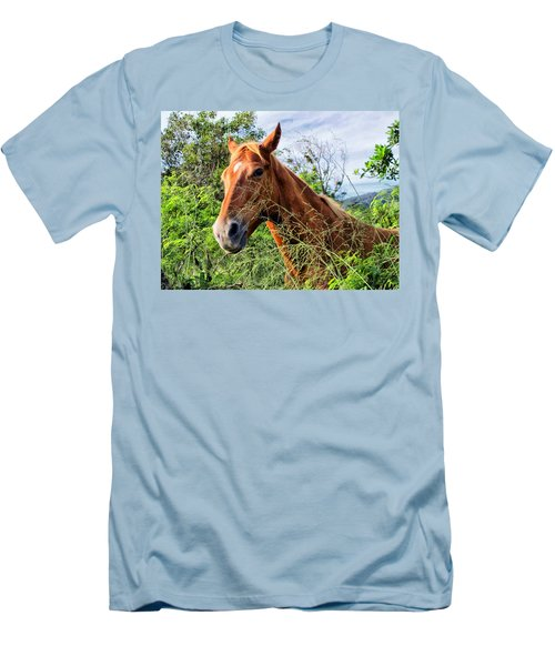 Men's T-Shirt (Slim Fit) featuring the photograph Horse 1 by Dawn Eshelman