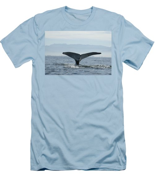Humpback Whale Tail 3 Men's T-Shirt (Athletic Fit)