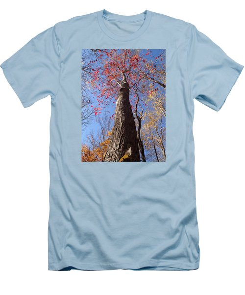 In The Woods 1 Men's T-Shirt (Athletic Fit)