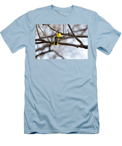 Indian Golden Oriole Men's T-Shirt (Slim Fit) by Fotosas Photography