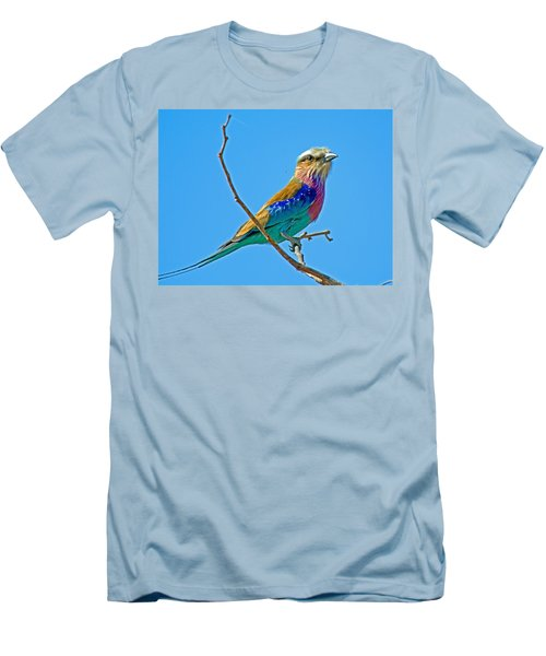 Lilac-breasted Roller In Kruger National Park-south Africa Men's T-Shirt (Athletic Fit)
