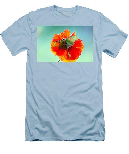Luna Moth On Poppy Aqua Back Ground Men's T-Shirt (Athletic Fit)
