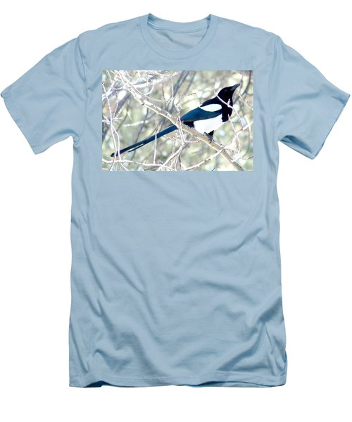 Magpie On Aspen Tree Men's T-Shirt (Athletic Fit)
