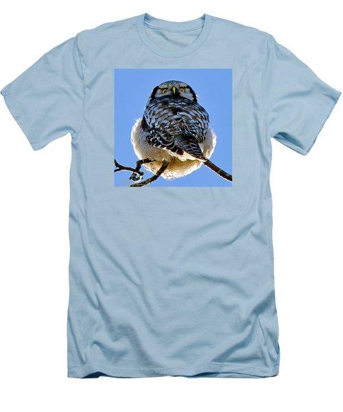 Northern Hawk Owl Looks Around Men's T-Shirt (Slim Fit) by Torbjorn Swenelius