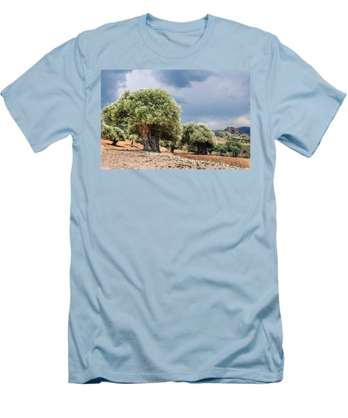 Olive Grove Men's T-Shirt (Slim Fit) by Mike Santis