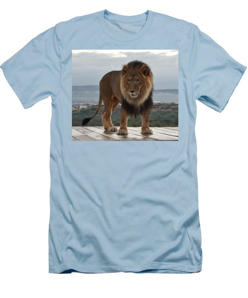 Out Of Africa Lion 3 Men's T-Shirt (Athletic Fit)
