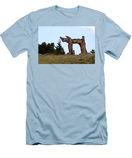 Pi In The Sky Men's T-Shirt (Athletic Fit)