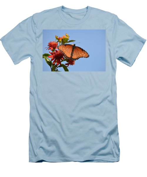 Queen Butterfly Men's T-Shirt (Slim Fit) by Debra Martz
