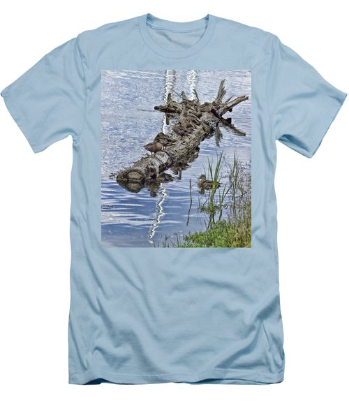 Raft Of Ducks Men's T-Shirt (Slim Fit) by Cathy Anderson