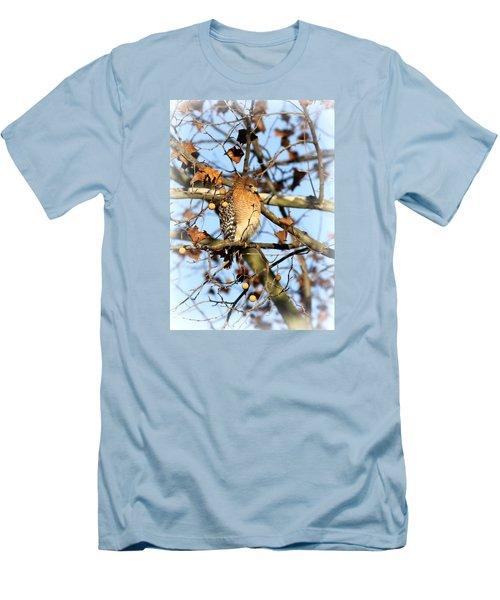 Red-shouldered Hawk - Img_7943 Men's T-Shirt (Athletic Fit)