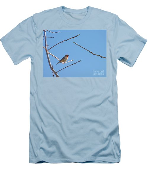 Sky Blue Beauty Men's T-Shirt (Athletic Fit)