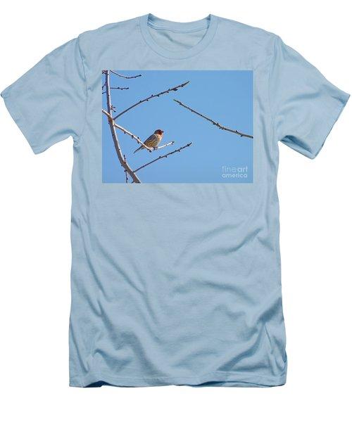 Sky Blue Beauty Men's T-Shirt (Slim Fit) by Meghan at FireBonnet Art