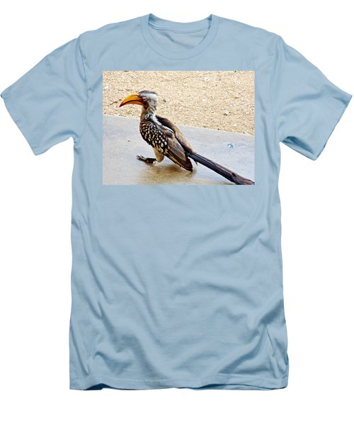 Southern Yellow-billed Hornbill In Kruger National Park-south Africa Men's T-Shirt (Athletic Fit)