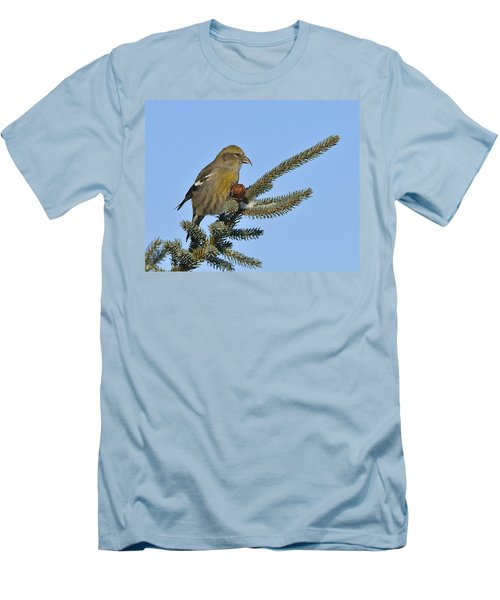 Spruce Cone Feeder Men's T-Shirt (Slim Fit) by Tony Beck