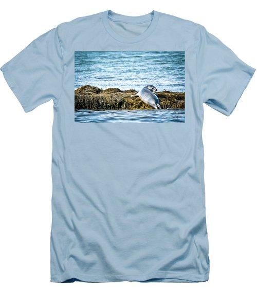 Sweet Seal Men's T-Shirt (Athletic Fit)