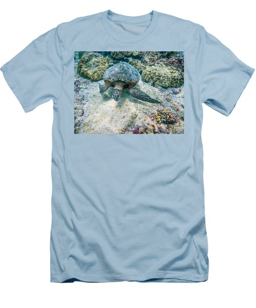 Swimming Turtle Men's T-Shirt (Slim Fit) by Denise Bird